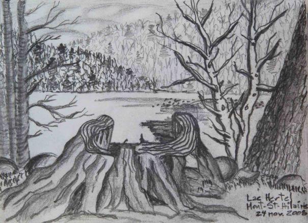 D01 Lac Hertel_St-Hilaire